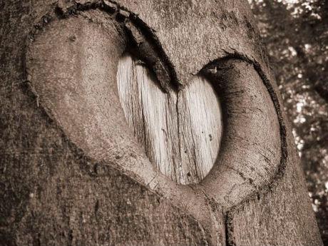 Heart 10 Ко дню Святого Валентина: Сердца, всюду сердца!
