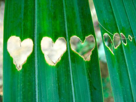 Heart 26 Ко дню Святого Валентина: Сердца, всюду сердца!