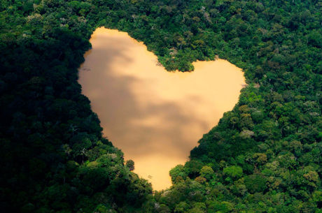 Heart 29 Ко дню Святого Валентина: Сердца, всюду сердца!