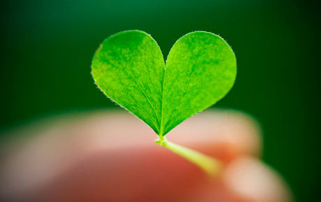 Heart 38 Ко дню Святого Валентина: Сердца, всюду сердца!