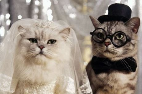 Как выйти замуж дурнушке