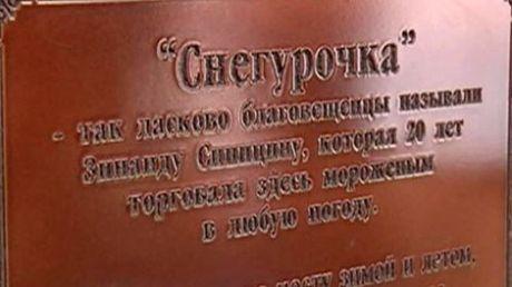 Памятник продавщице мороженого в Благовещенске